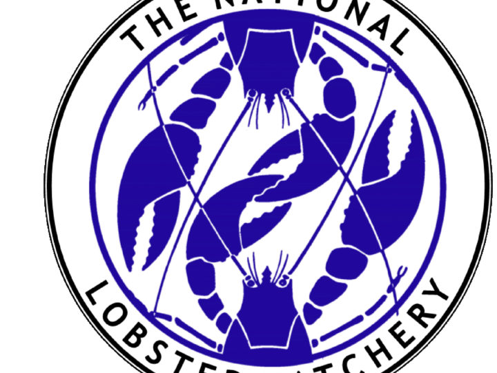 National Lobster Hatchery Collaboration 2018